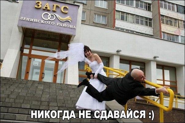 9sE_OebBwTM.jpg