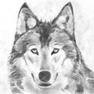 wolk181281